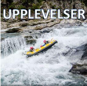 UPPLEVELSE1